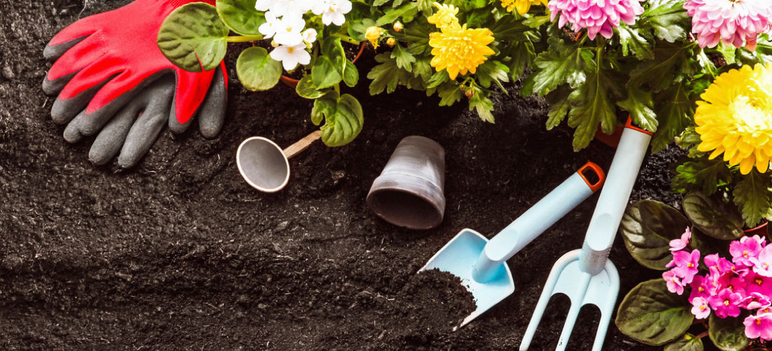 Tools for gardening in spring